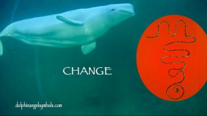 change-delphinagoud-kopie
